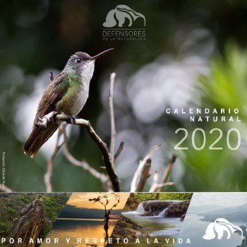 convocatoria-concurso-fotografico-ecosistemas-guatemala-calendario-natural