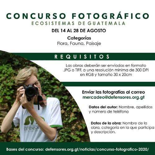 convocatoria-concurso-fotografico-ecosistemas-guatemala-organizacion-defensores-naturaleza-requisitos-bases