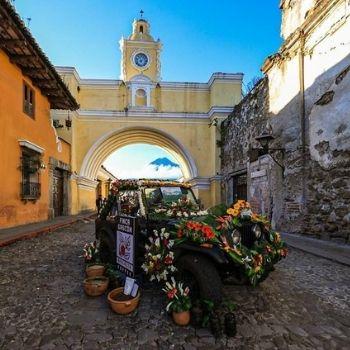 cuando-sera-festival-flores-2020-antigua-guatemala-noviembre-mes-flores-rendir-homenaje-guatemaltecos