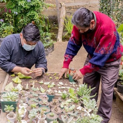 vivero-qumran-legado-hombre-trabajador-originario-san-juan-sacatepequez-generaciones-amor-plantas