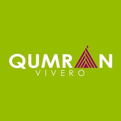 vivero-qumran-legado-hombre-trabajador-originario-san-juan-sacatepequez-origen-nombre-jardin-eden