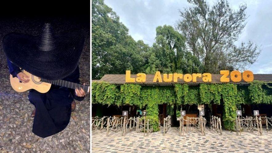 Celebración del Día de Todos los Santos en el Zoológico La Aurora | Octubre - Noviembre 2020