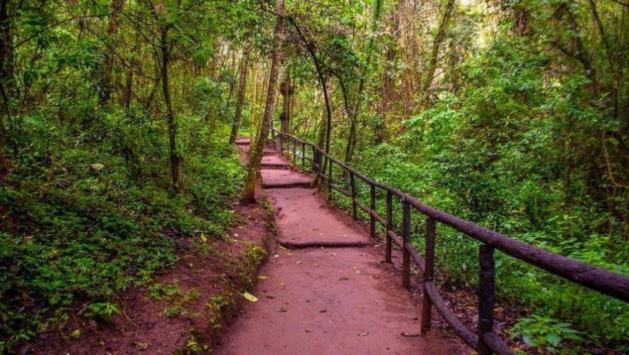 Fecha de reactivación del parque ecológico Senderos de Alux | Octubre 2020