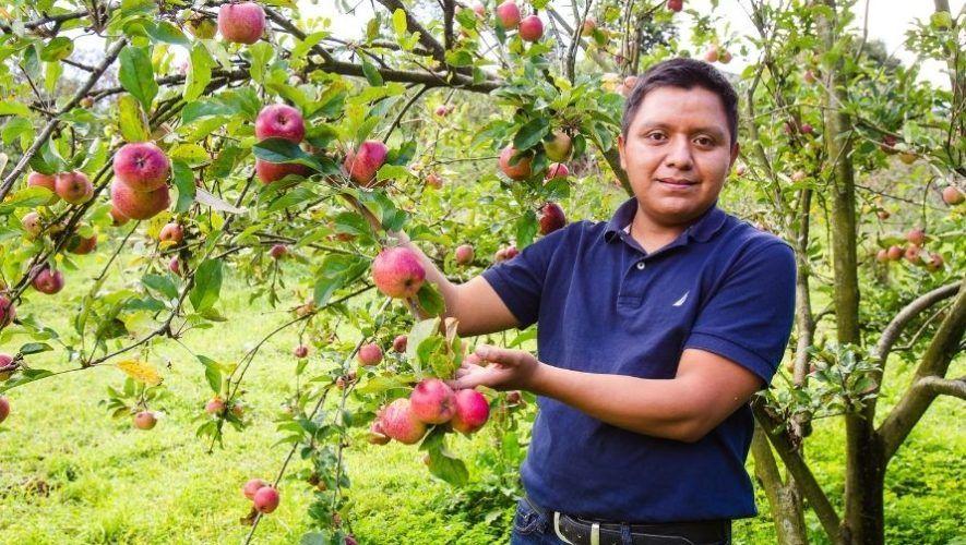 Mynor Algua, el guatemalteco que exporta sus productos a nivel internacional