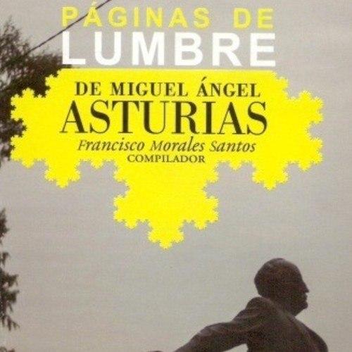 coleccion-obras-guatemaltecas-son-parte-biblioteca-nacion-ankara-turquia-libros-literatura