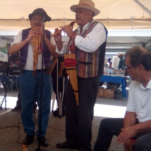 participa-convocatoria-festival-cultural-avenida-arboles-ciudad-guatemala-comunicarse-quienes-son