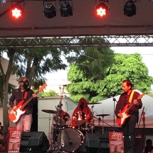 participa-convocatoria-festival-cultural-avenida-arboles-ciudad-guatemala-conciertos