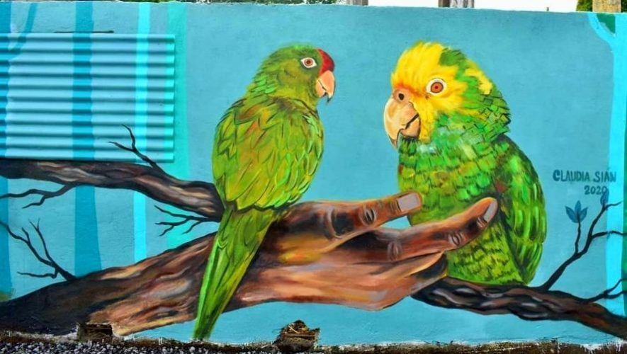 Artista guatemalteca pintó colorido mural inspirado en aves en la conservación de los loros