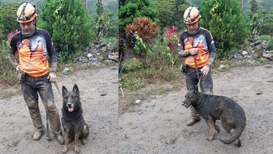 Brigada Canina de rescate k9 SAR ayudó en las tareas de búsqueda en Alta Verapaz