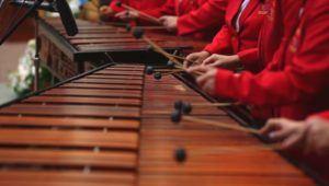 Concierto gratuito de marimbas en el Teatro Nacional | Diciembre 2020