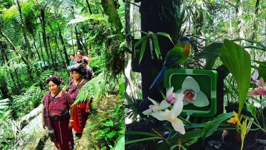 Escuela alemana de preprimaria realizó donación a Orquigonia de Guatemala