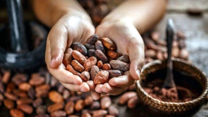 III Feria del cacao y del chocolate, edición virtual | Noviembre 2020