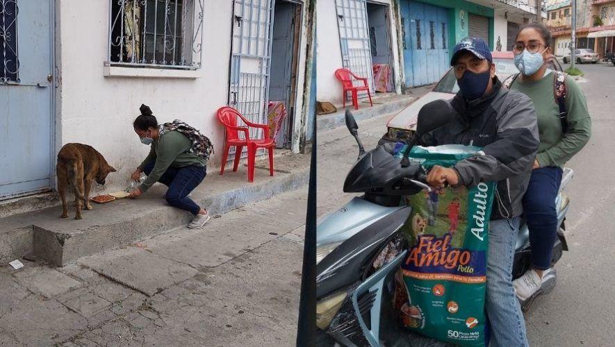 Jóvenes de Villa Hermosa repartieron alimento a perros sin hogar