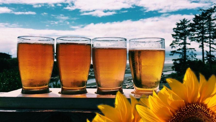 Maridaje de cervezas y platillos gourmet con flores Noviembre 2020