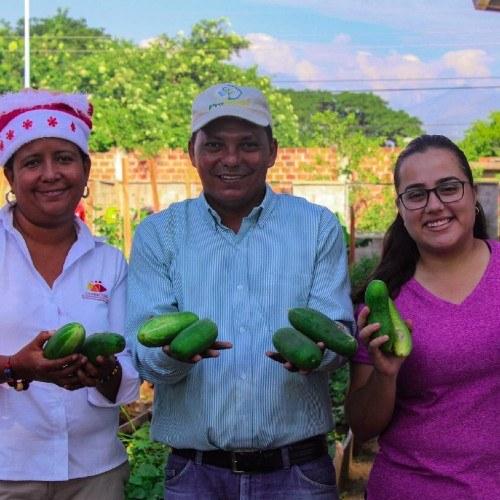 aiesec-ofrece-voluntariado-jovenes-guatemaltecos-2021-beneficios-disponibilidad-inversion