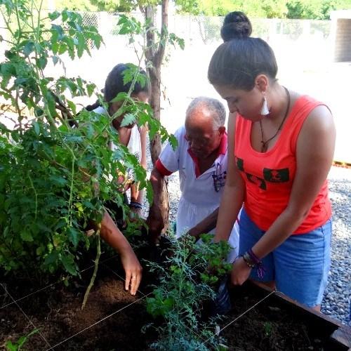aiesec-ofrece-voluntariado-jovenes-guatemaltecos-2021-convocatoria-objetivos-desarrollo-sostenible-onu