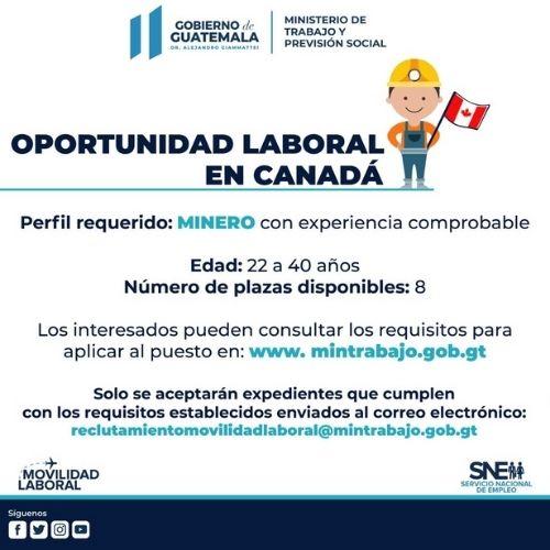 convocatoria-guatemaltecos-quieran-trabajar-canada-2020-mintrab