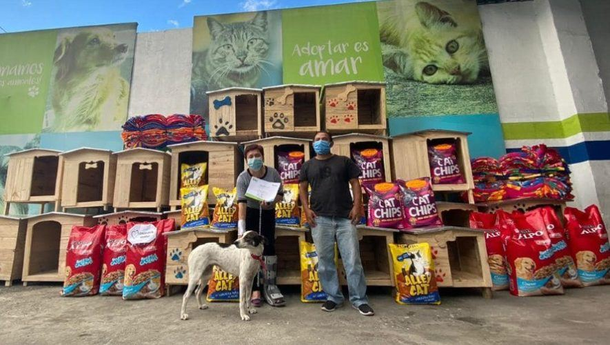 guatemalteca-hizo-donativo-mascotas-albergue-mixco