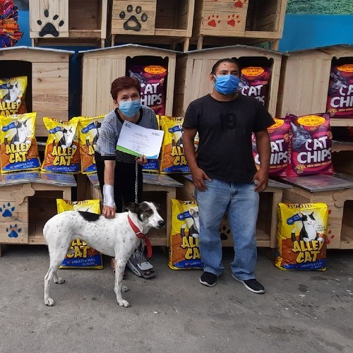 guatemalteca-hizo-donativo-mascotas-albergue-mixco-mensaje-ayuda-apoyo