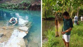 Guatemalteco obtuvo primer lugar de Centroamérica en concurso mundial de biotopos acuáticos