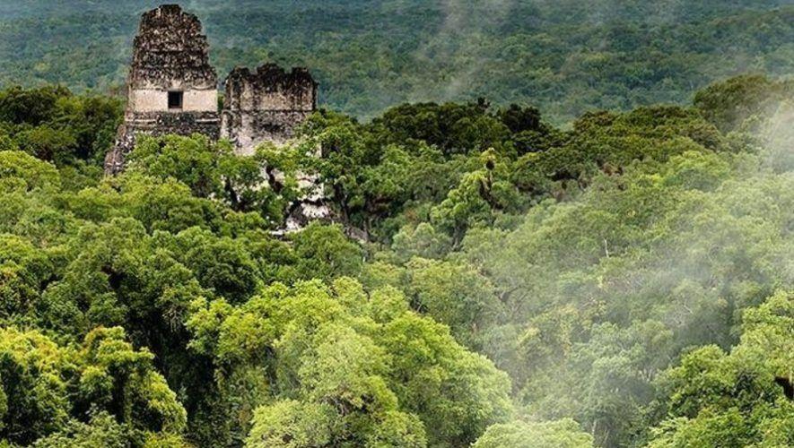 inab-prepara-hacer-segundo-inventario-forestal-nacional-guatemala-ifn