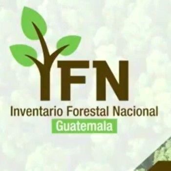inab-prepara-hacer-segundo-inventario-forestal-nacional-guatemala-ifn-conap-fao