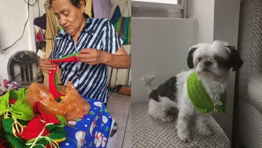 Doña Any, la abuelita guatemalteca que emprendió negocio de bufandas para perros y gatos