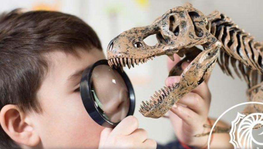 Actividades con fósiles y dinosaurios en Alta Verapaz | Enero 2021