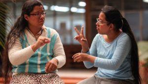 Curso virtual de lengua de señas, Comité Pro Ciego y Sordos   Febrero 2021