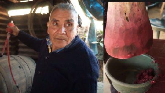 Lázaro Raxón el abuelito que elabora vino de manera artesanal en San Juan Sacatepéquez