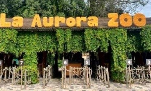 convocatoria-guatemaltecos-quieran-ser-voluntarios-zoologico-aurora-requisitos
