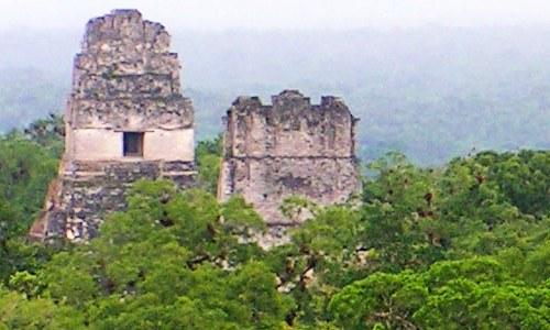 guatemala-incluida-100-avances-politicas-climaticas-apolitical-reserva-biosfera-maya-peten