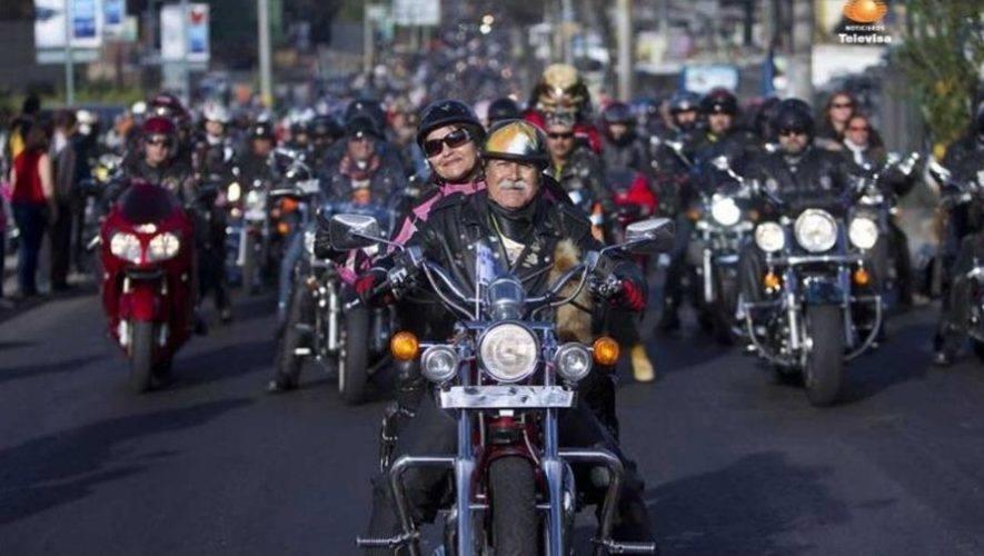 Actividades de la Caravana del Zorro 2021 en Guatemala | Febrero 2021