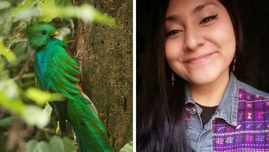 bbc-mundo-compartio-foto-quetzal-hecha-guatemalteca-cindy-lorenzo