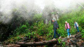 Sendero Ecológico La Maceta, un destino para caminar en medio del bosque de Guatemala