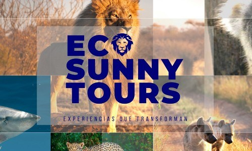 eco-sunny-tours-voluntariado-guatemaltecos-latinos-ayuda-fauna-guatemala-requisitos-que es