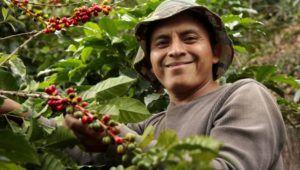 Catación del café guatemalteco en Taipei | Mayo 2021