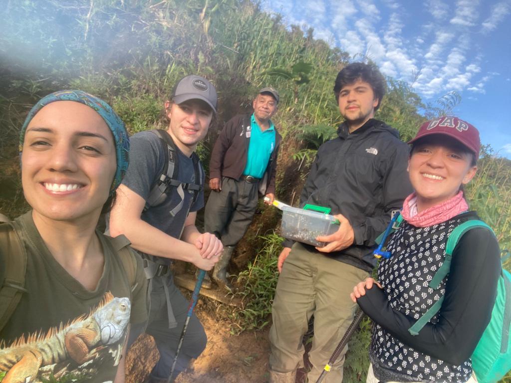 grupo de investigación uvg salamandra alta verapaz