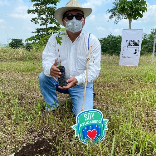 900 mil árboles serán plantados en departamentos de Guatemala