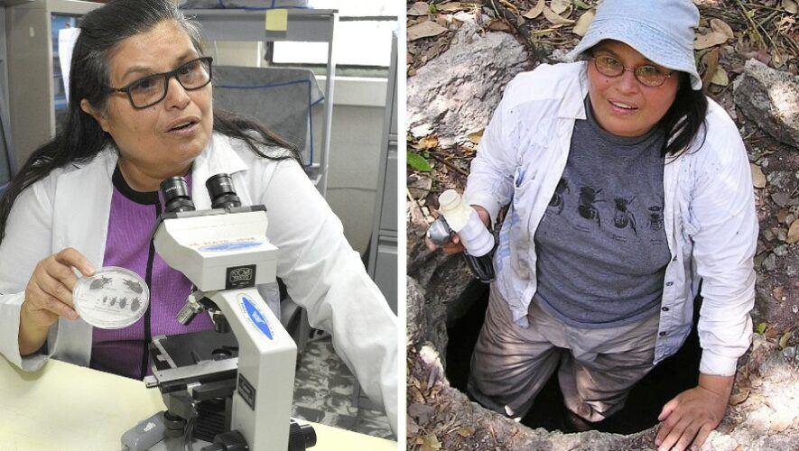 Carlota Monroy, científica guatemalteca destacada por su lucha contra el mal de Chagas, por la BBC