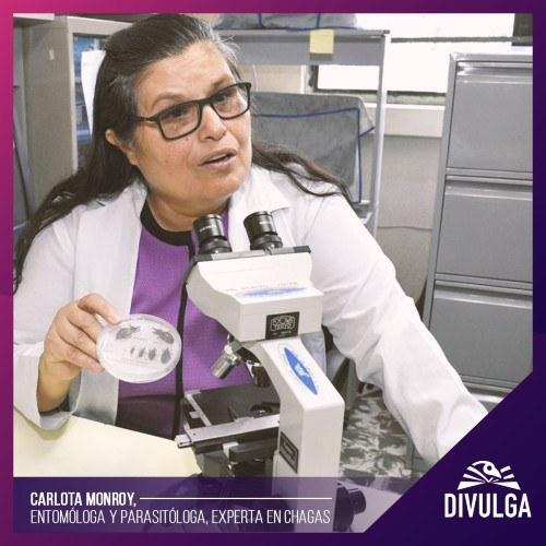 Carlota Monroy, científica guatemalteca lucha contra el mal de Chagas