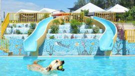 Eco Parque Canino es un parque acuático pet friendly que puedes visitar en Guatemala