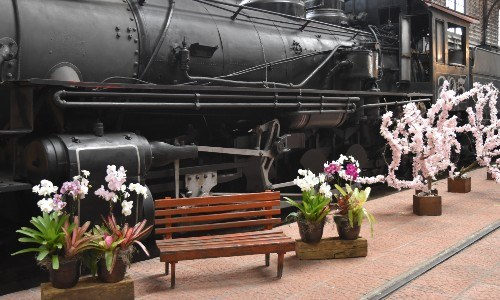 Museo del Ferrocarril set de fotos por el Día de la Madre en Guatemala
