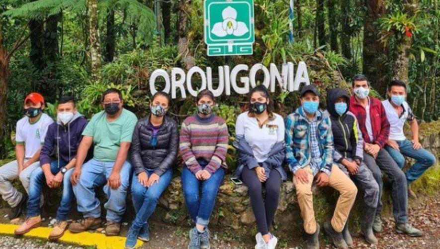 Orquigonia, el proyecto guatemalteco que busca salvar a la Monja Blanca, flor nacional