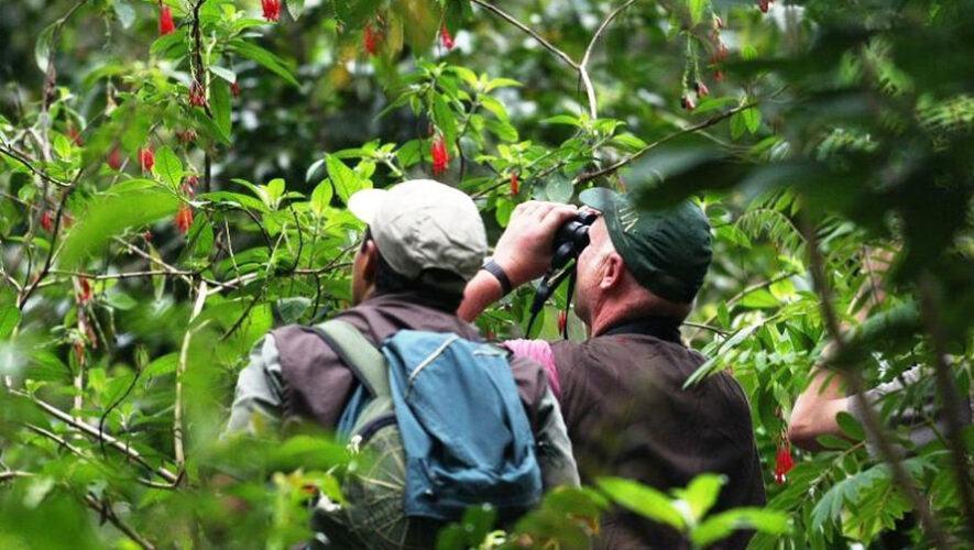 Primer tour de avistamiento de aves en el Parque Ecológico La Asunción   Mayo 2021