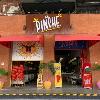 EL PINCHE 3