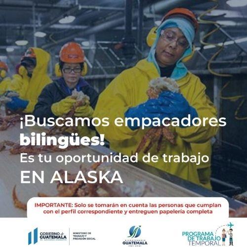 Empleo Alaska para guatemaltecos
