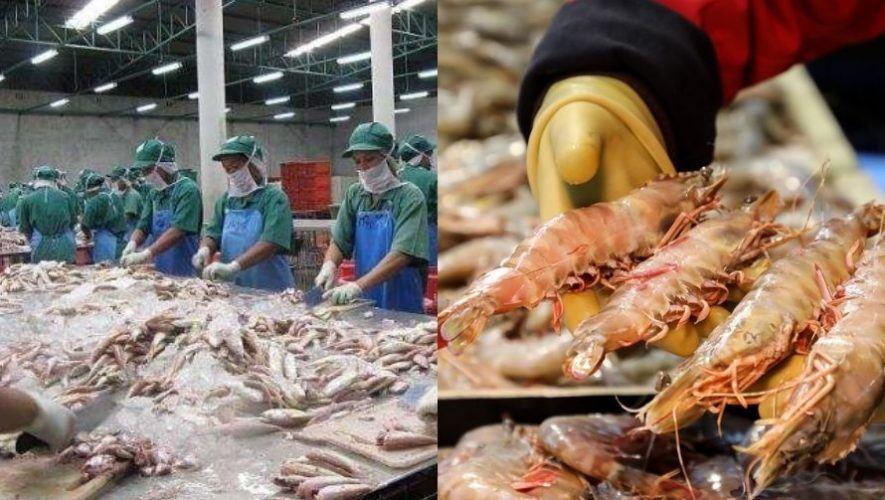 plazas de trabajo Alaska para guatemaltecos 2021