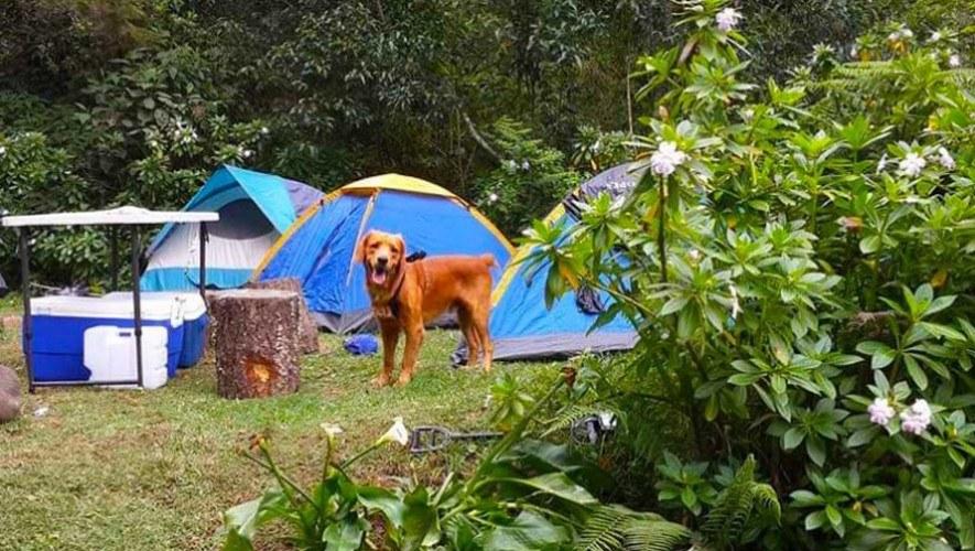 Cascadas-de-Tatasirire-acampar con perros