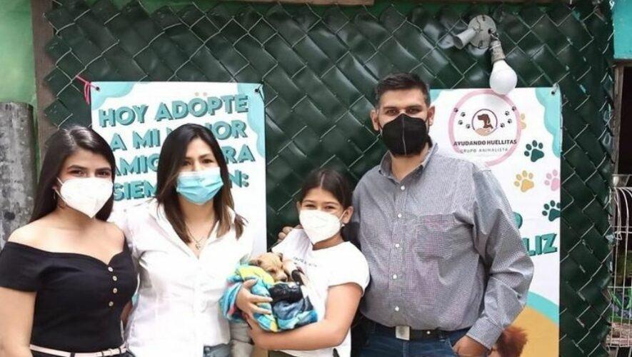 Feria de adopciones de mascotas de Ayudando Huellitas GT, Guatemala   Agosto 2021
